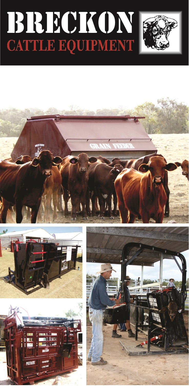 Breckon Cattle Equipment Pull Up Banner wEBSITE.jpg